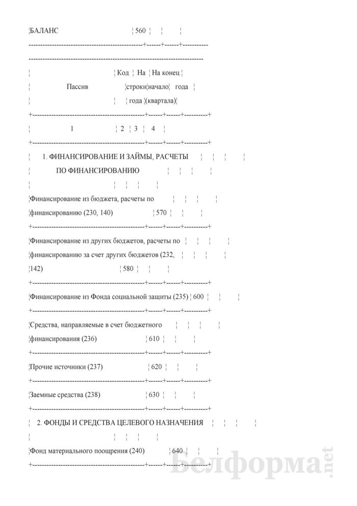 Бухгалтерский баланс (Форма 1) (для бюджетных организаций). Страница 6