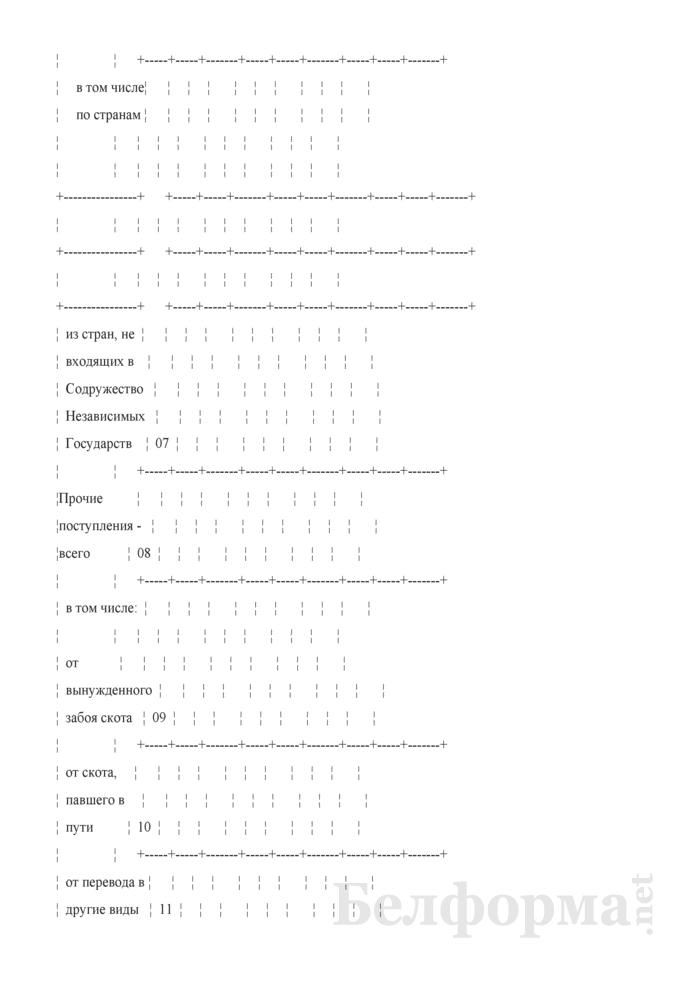 Отчетный баланс кожевенного сырья. Форма 4-кожсырье (Минсельхозпрод) (квартальная (I, II, III кварталы, год). Страница 6