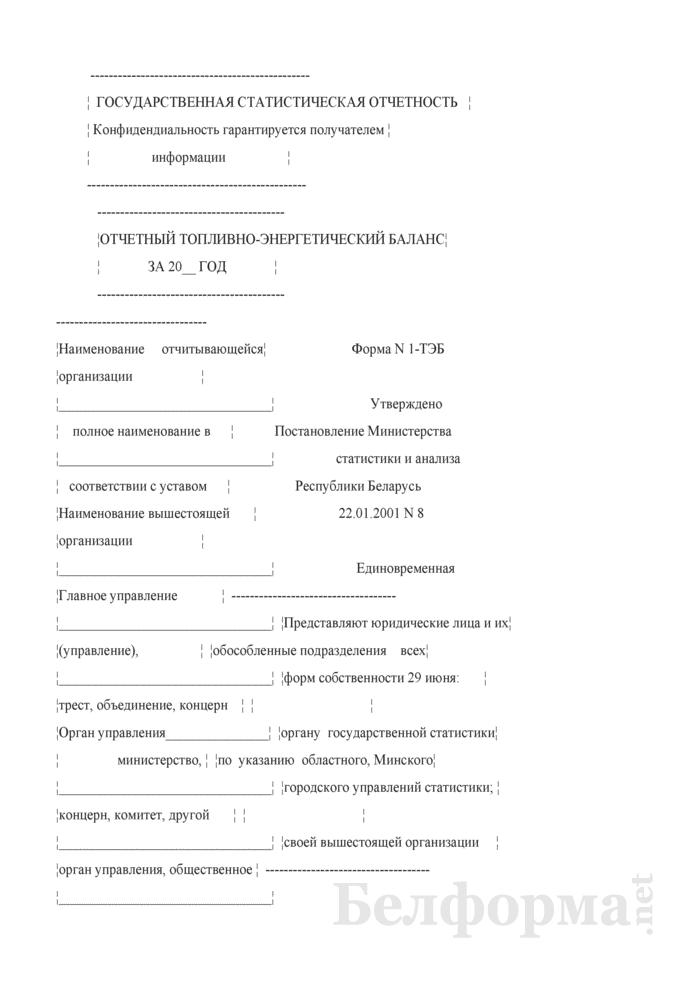 Отчетный топливно-энергетический баланс. Форма № 1-ТЭБ. Страница 1