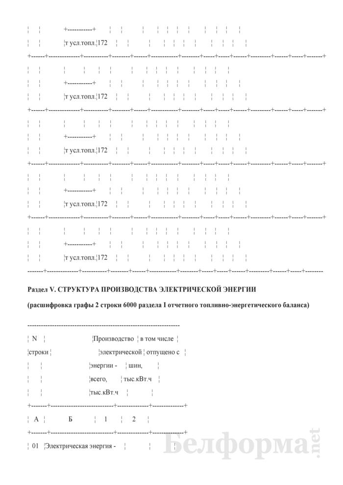 Отчетный топливно-энергетический баланс. Форма № 1-ТЭБ. Страница 21