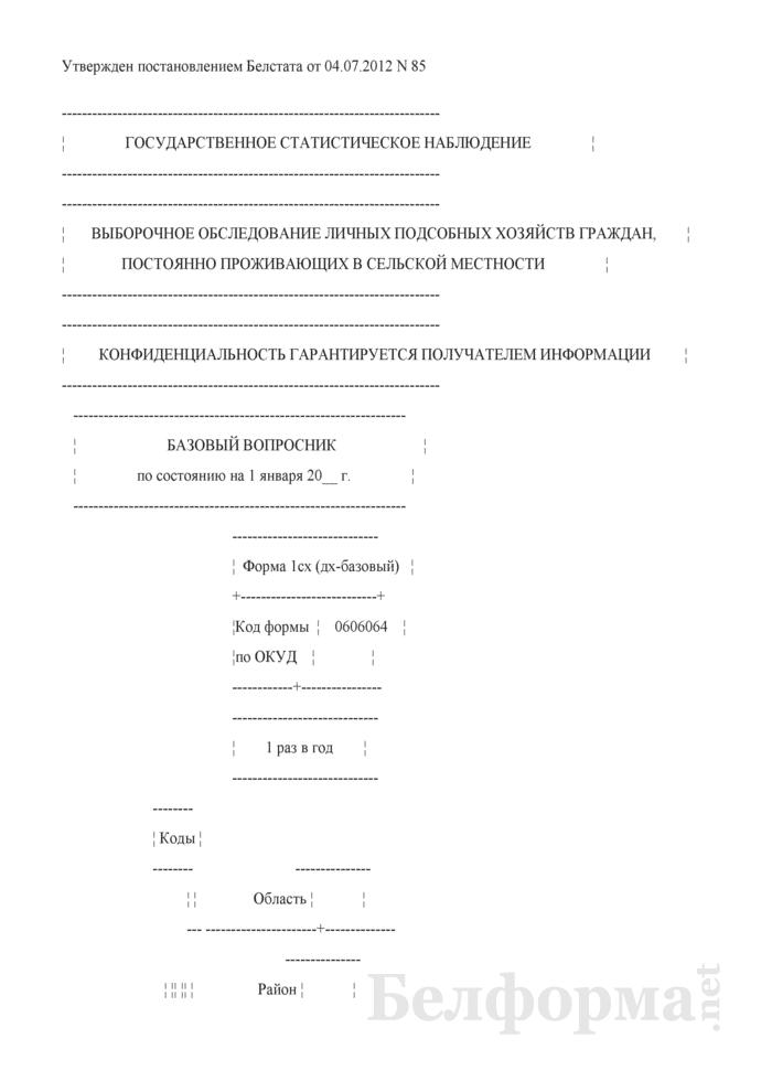Базовый вопросник (Форма 1сх (дх-базовый) (1 раз в год)). Страница 1