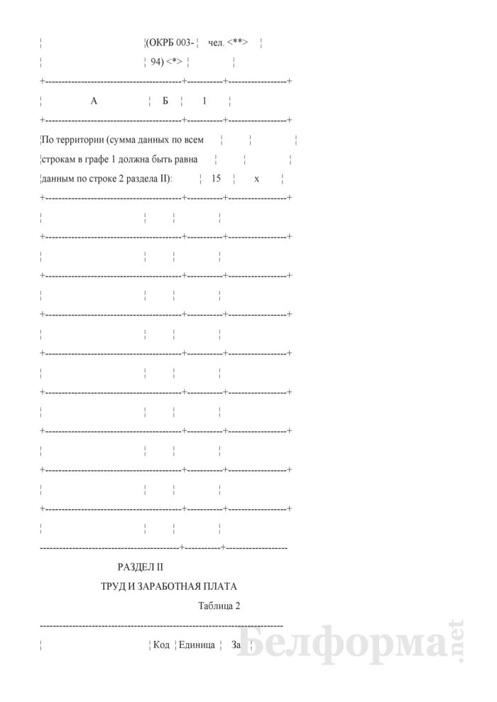 Отчет о финансово-хозяйственной деятельности малой организации (Форма 1-мп (годовая)). Страница 3