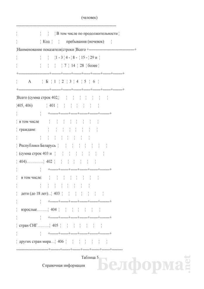 Отчет о коллективных средствах размещения (Форма 1-тур (размещение) (годовая)). Страница 8