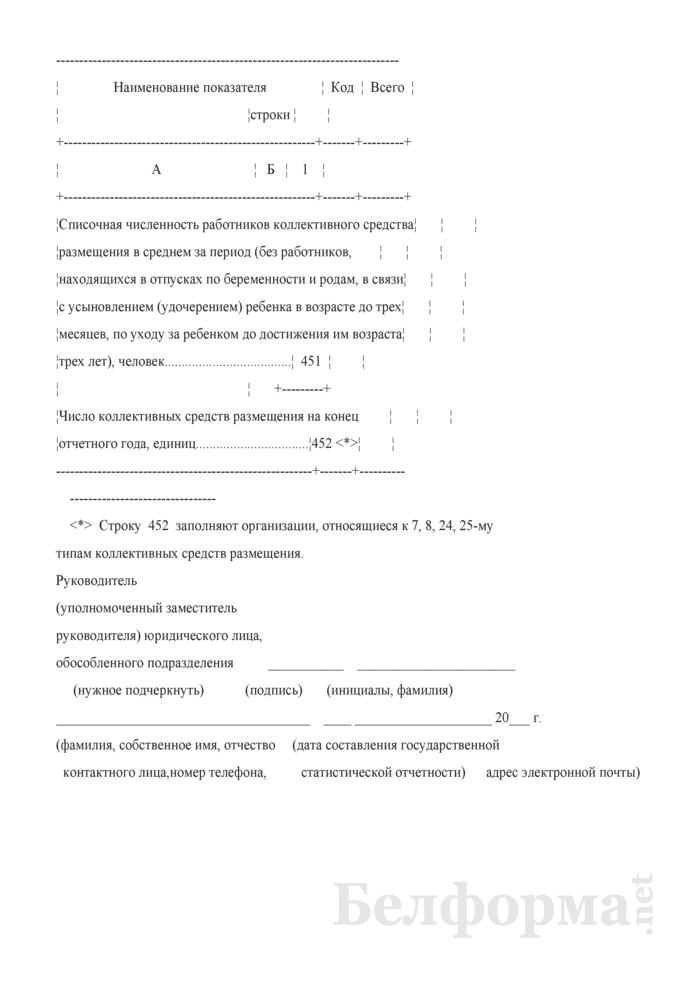 Отчет о коллективных средствах размещения (Форма 1-тур (размещение) (годовая)). Страница 9