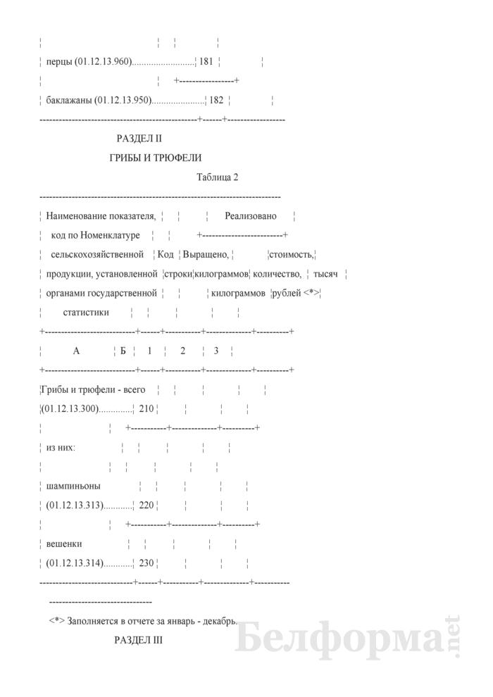 Отчет о производстве овощей в защищенном грунте, выращивании и реализации грибов и цветочной продукции (Форма 12-сх (защищенный грунт) (месячная, срочная)). Страница 4