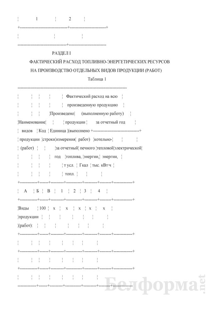 Отчет о расходе топливно-энергетических ресурсов на производство отдельных видов продукции (работ), включая производство тепловой и электрической энергии (Форма 1-тэк (продукция) (годовая)). Страница 3
