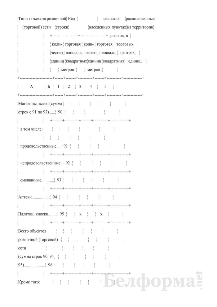 Отчет о розничной торговле (Форма 1-торг (розница) (годовая)). Страница 17