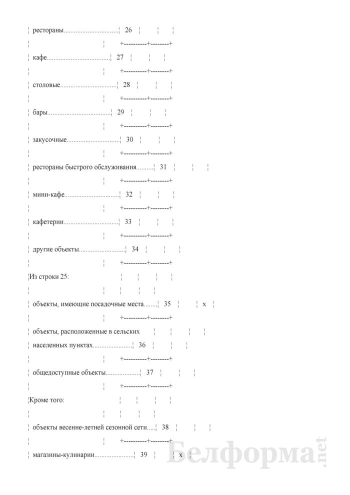 Отчет о розничном товарообороте индивидуального предпринимателя (Форма 1-торг (ип) (годовая)). Страница 7