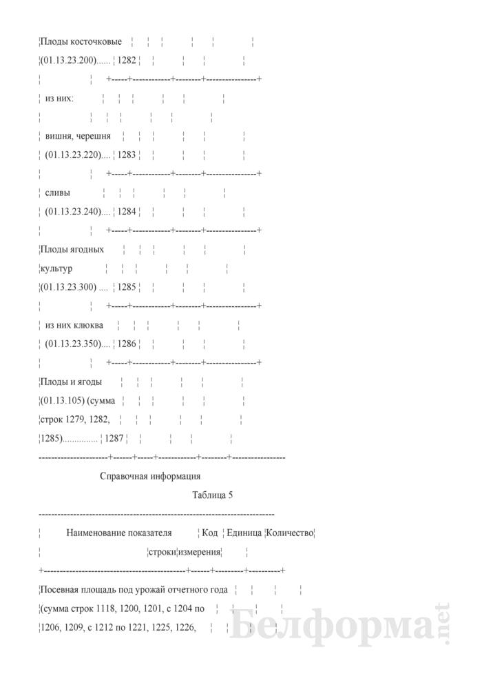 Отчет о сборе урожая сельскохозяйственных культур (Форма 1-сх (растениеводство) (1 раз в год)). Страница 17
