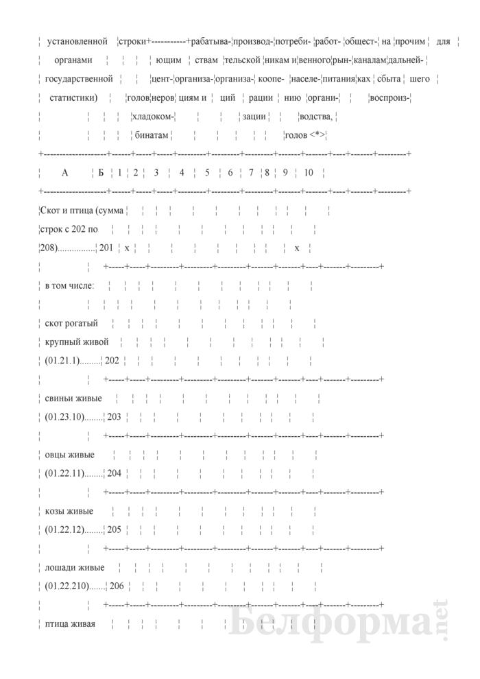 Отчет о состоянии животноводства (Форма 12-сх (животноводство) (месячная, срочная), код формы по ОКУД 0606017). Страница 5