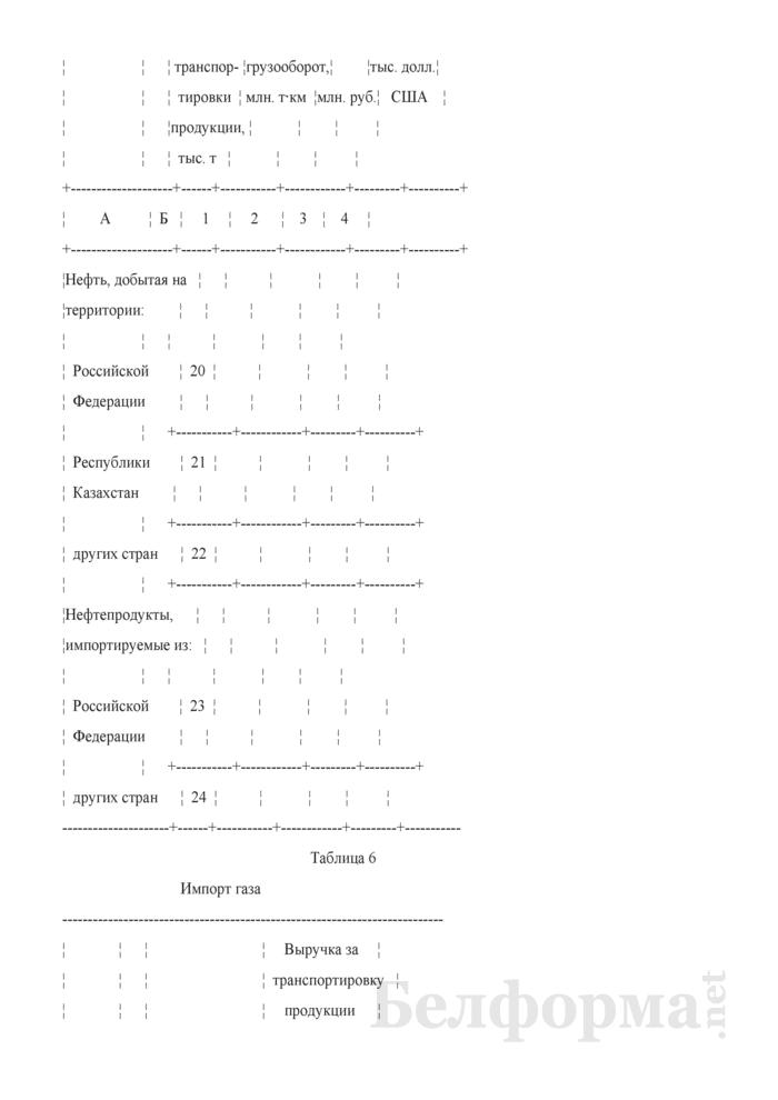Отчет о транспортировке продукции магистральными трубопроводами. Форма 12-тр (трубопровод). Страница 6