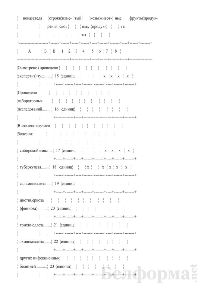 Отчет о ветеринарном надзоре и ветеринарно-санитарной экспертизе (Форма 2-ветнадзор (Минсельхозпрод) (полугодовая (за январь - июнь, июль - декабрь))). Страница 5