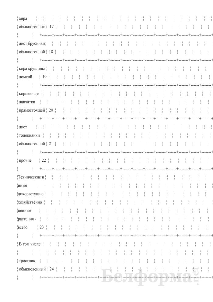 Отчет о закупках (заготовках) дикорастущих растений и (или) их частей (Форма 1-дикорастущие (Минприроды) (годовая)). Страница 6