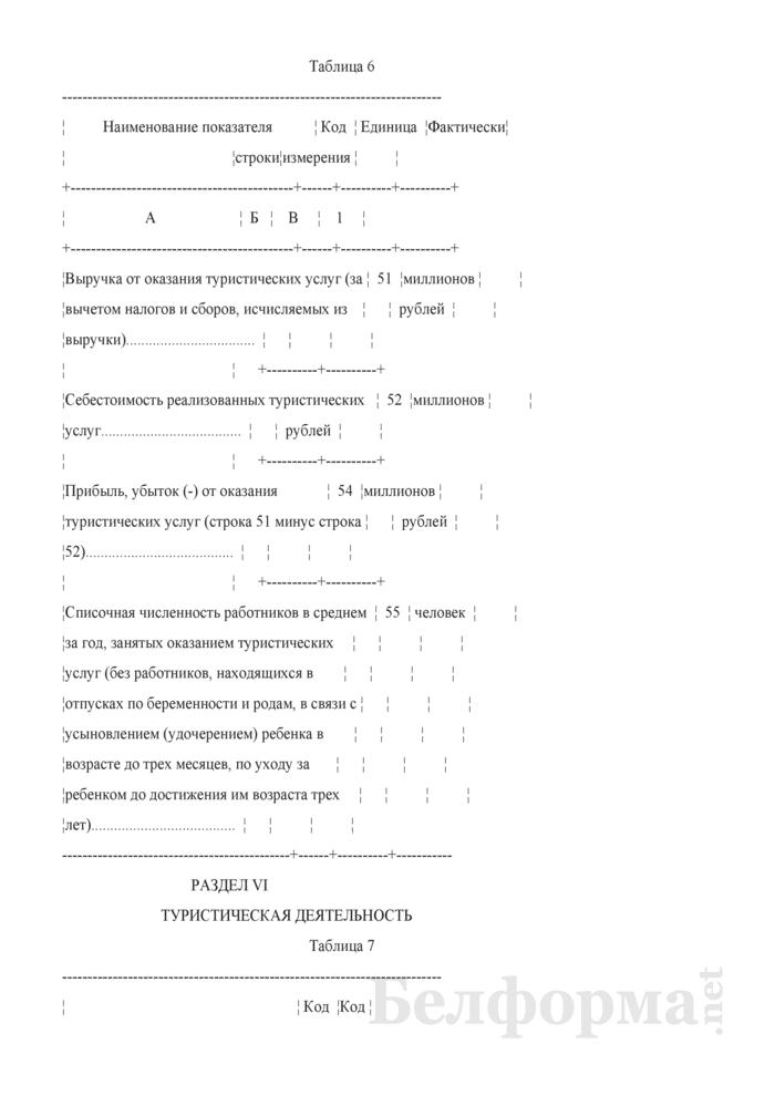 Отчет об осуществлении туристической деятельности (Форма 1-тур (годовая)). Страница 7