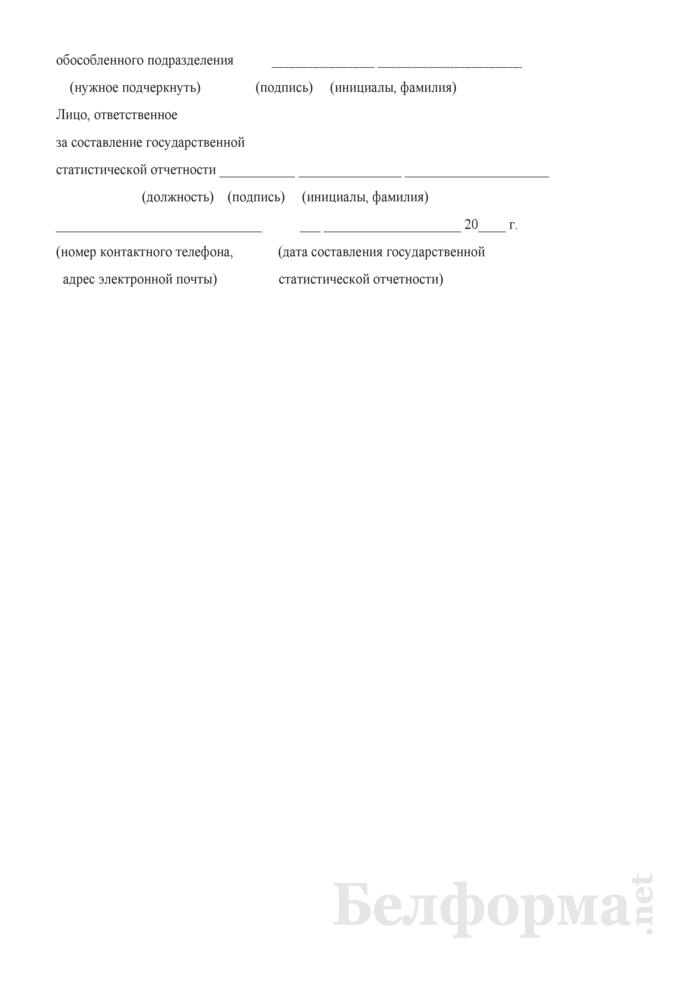 Отчет об освидетельствовании детей медико-реабилитационными экспертными комиссиями (Форма 1-инвалидность дети (Минздрав) (годовая)). Страница 29