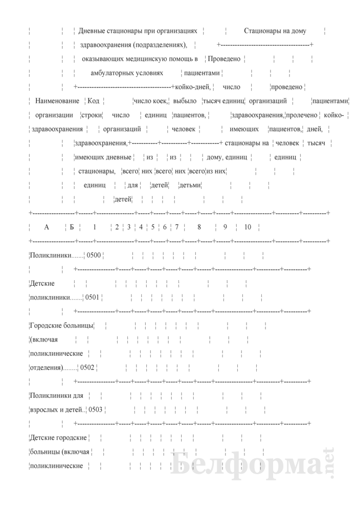 Отчет организации здравоохранения, оказывающей медицинскую помощь в стационарных и амбулаторных условиях (Форма 1-организация (Минздрав) (годовая)). Страница 29