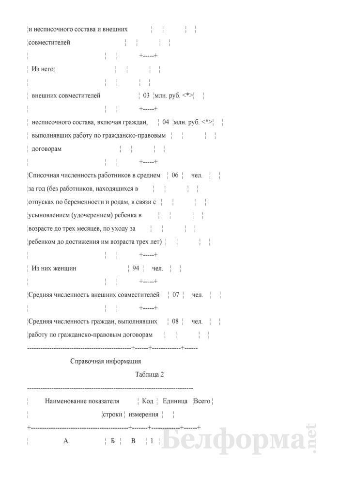 Отчет по труду (Форма 1-т (некоммерческие) (годовая)). Страница 3