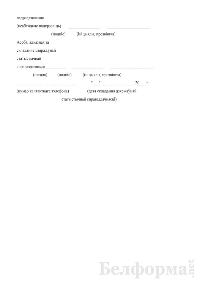 Справаздача аб дзейнасцi публiчнай бiблiятэкi. Форма № 1-бiблiятэка (Мiнкультуры) (гадавая). Страница 6