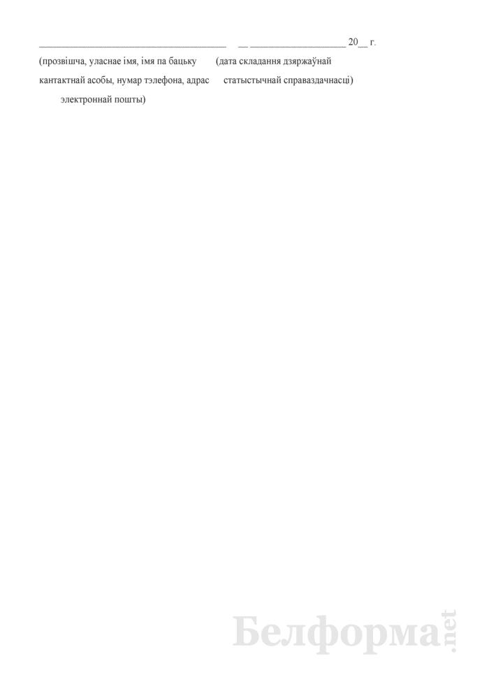 Справаздача ўстановы дадатковай адукацыi дзяцей i моладзi (Форма 1-пу (Мiнадукацыя) (1 раз у год)). Страница 9
