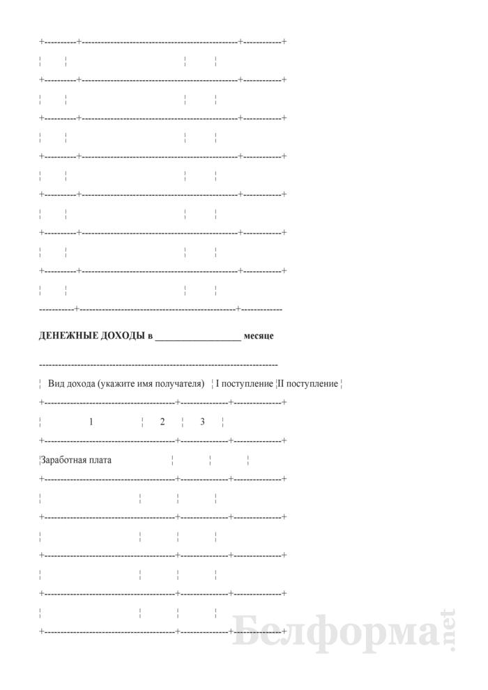 Журнал ежеквартальных расходов и доходов (Форма 4-дх (журнал) (квартальная), код формы по ОКУД 0617404). Страница 11