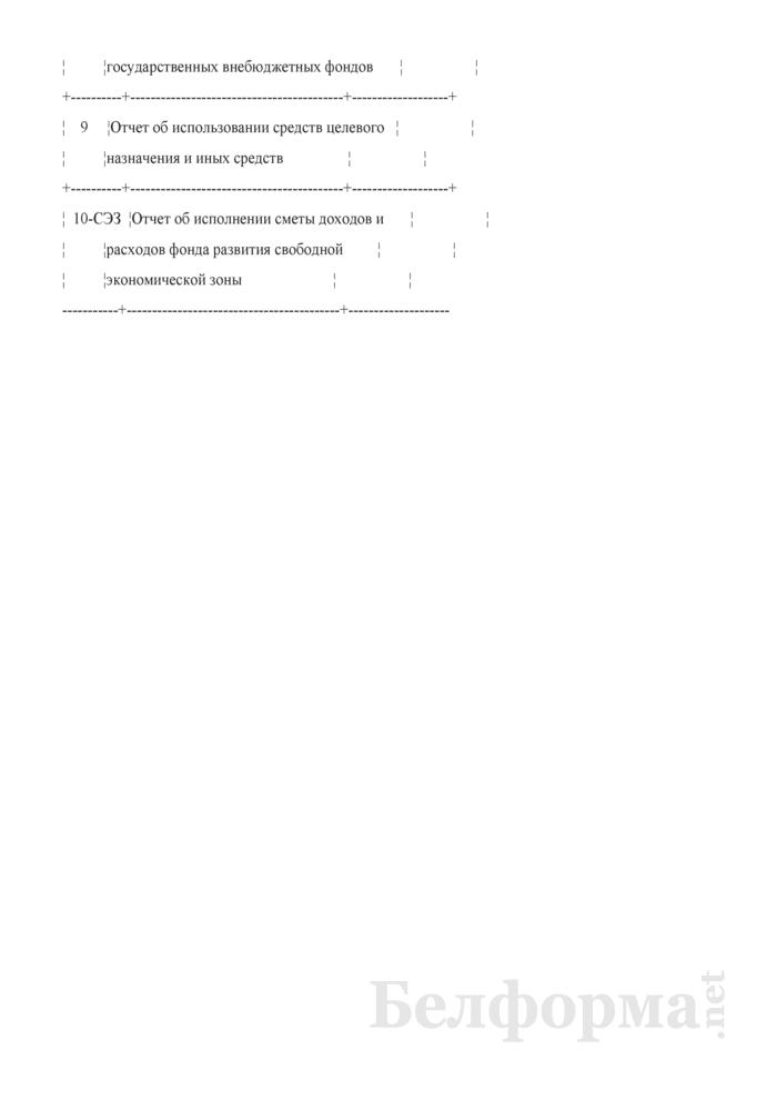Информационный листок для представления бухгалтерской отчетности. Страница 2