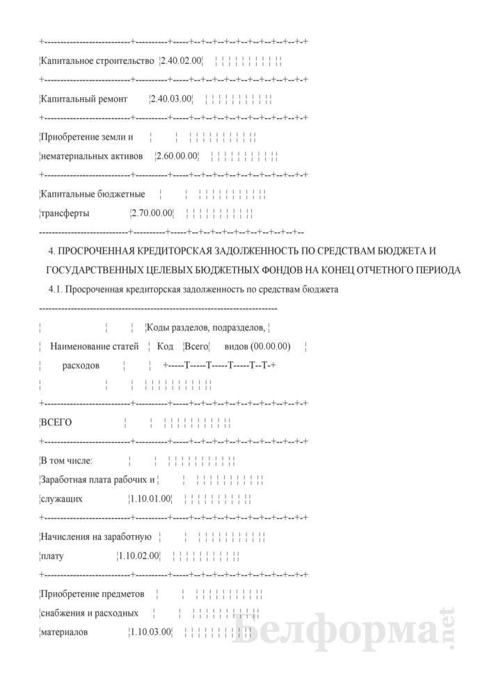 Месячный отчет о расходовании средств, выделенных из бюджета (Форма 1-М (оперативная)). Страница 18