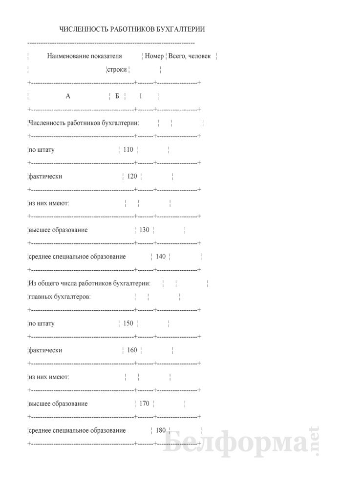 Отчет об автоматизации бухгалтерского учета и составе бухгалтерских кадров (Форма 75-АПК). Страница 3