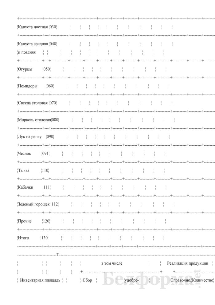 Отчет по овощеводству (Форма 18-АПК). Страница 2