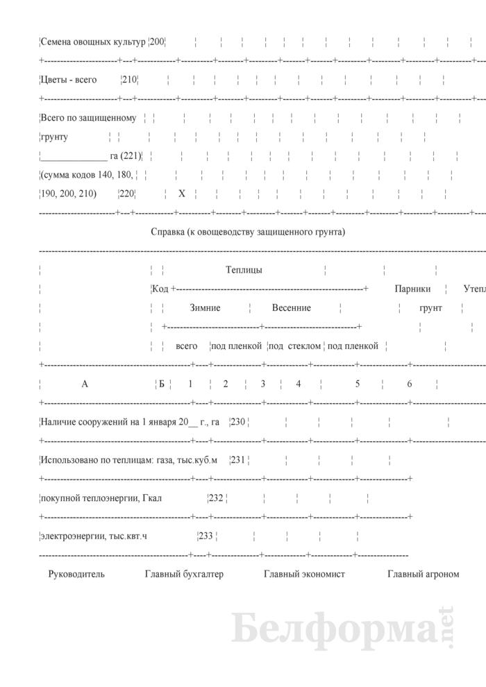 Отчет по овощеводству (Форма 18-АПК). Страница 4