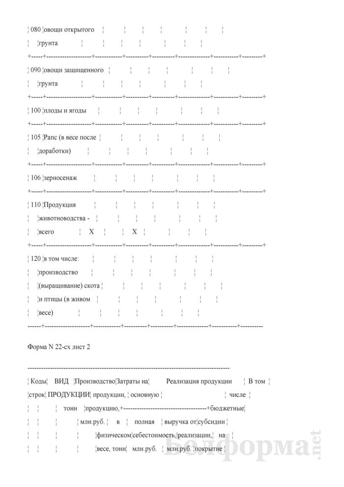 Отчет по ожидаемым результатам финансово-хозяйственной деятельности (форма 22-сх). Страница 3