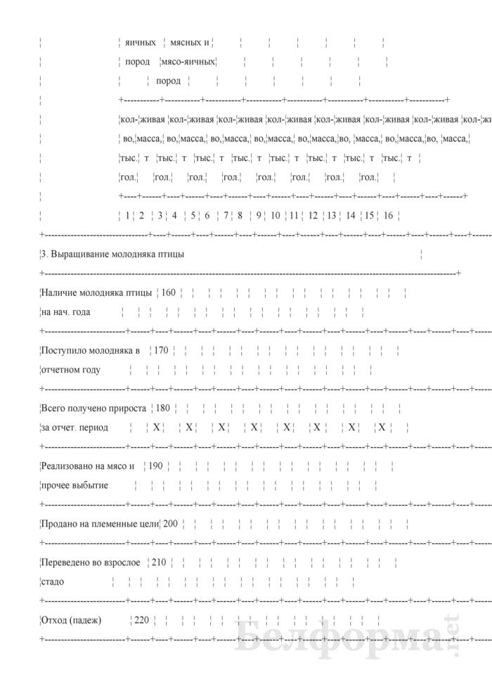 Отчет по разведению сельскохозяйственной птицы (Форма 20-АПК). Страница 3
