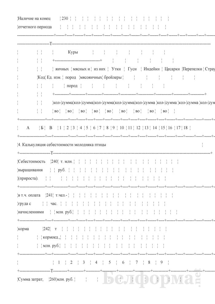 Отчет по разведению сельскохозяйственной птицы (Форма 20-АПК). Страница 4