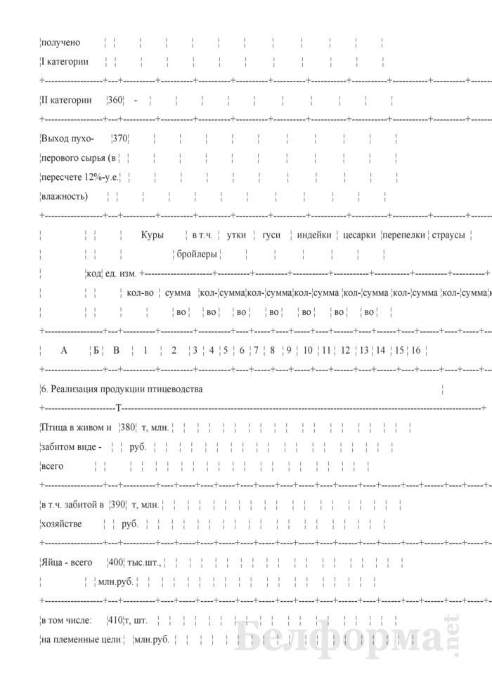 Отчет по разведению сельскохозяйственной птицы (Форма 20-АПК). Страница 6