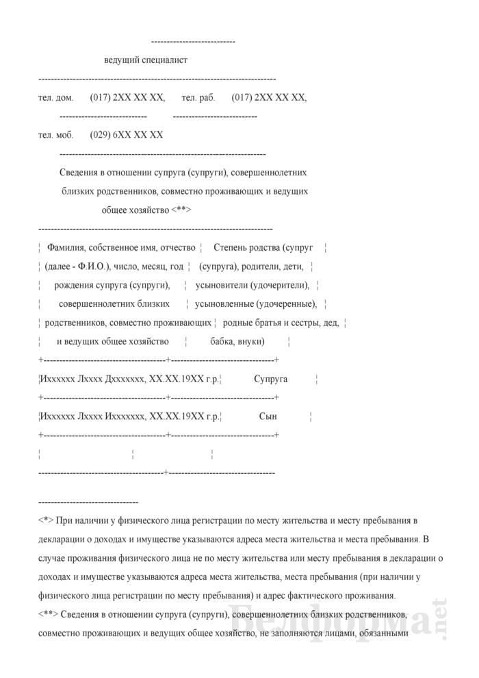 Пример заполнения государственным служащим декларации о доходах и имуществе. Страница 2