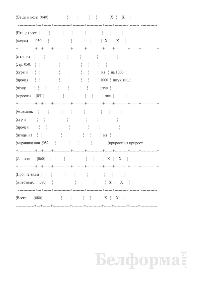 Расход кормов (Форма 14-АПК). Страница 2
