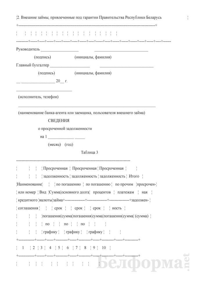 Отчет о состоянии задолженности по внешним государственным займам и внешним займам, привлеченным под гарантии Правительства Республики Беларусь. Страница 3