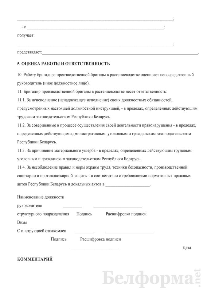 Должностная инструкция бригадиру производственной бригады в растениеводстве. Страница 4