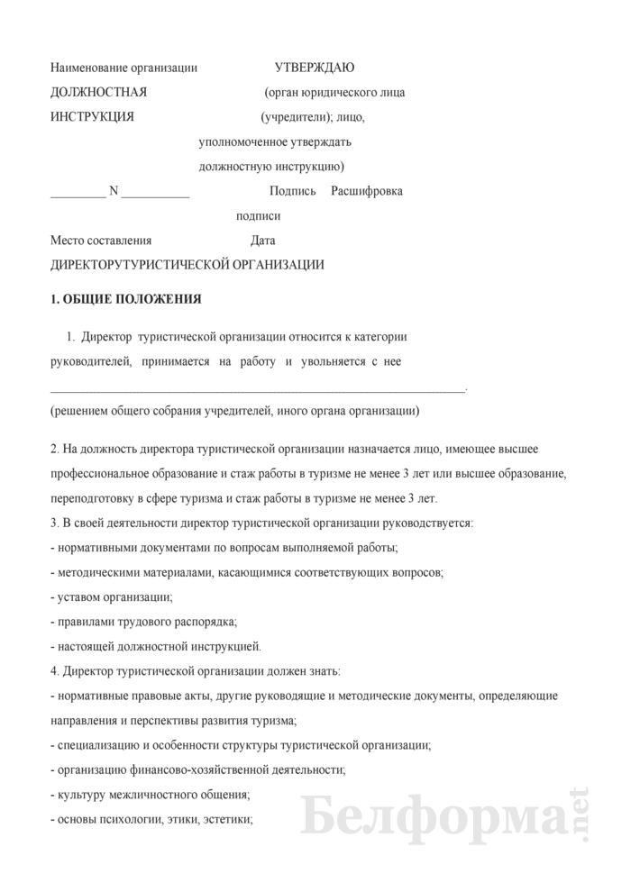 Должностная инструкция директору туристической организации. Страница 1