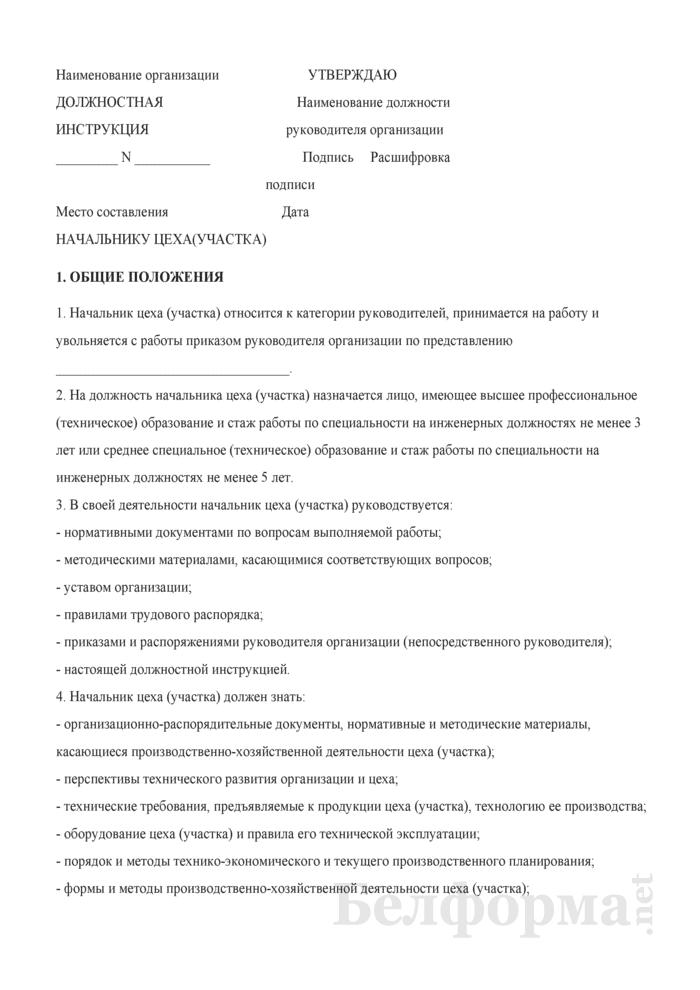 Должностная инструкция начальнику цеха (участка). Страница 1