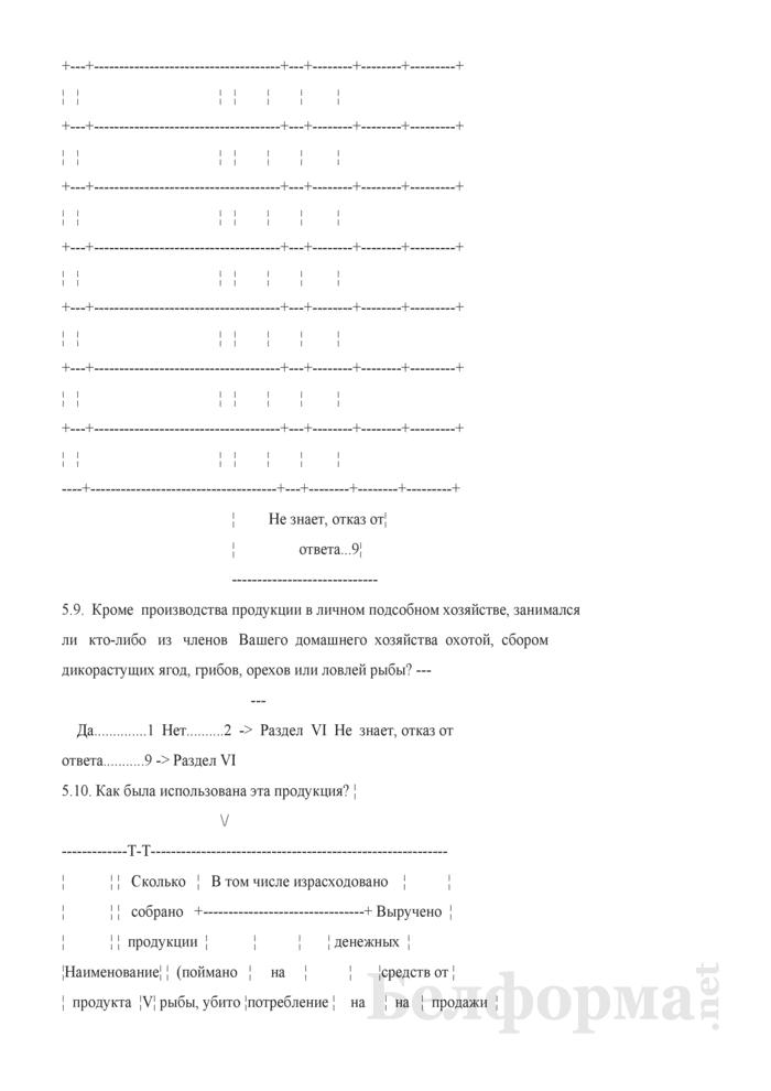 Ежеквартальный вопросник по расходам и доходам домашних хозяйств (Форма 4-дх (вопросник) (квартальная). Страница 24