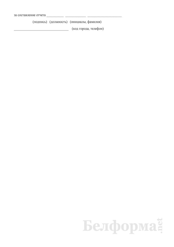 """Отчет об эффективности и направлениях использования государственной поддержки, установленной пунктами 3 и 4 Указа Президента Республики Беларусь от 7 июня 2007 г. № 265 """"О Государственной комплексной программе развития регионов, малых и средних городских поселений на 2007 - 2010 годы"""". Страница 3"""