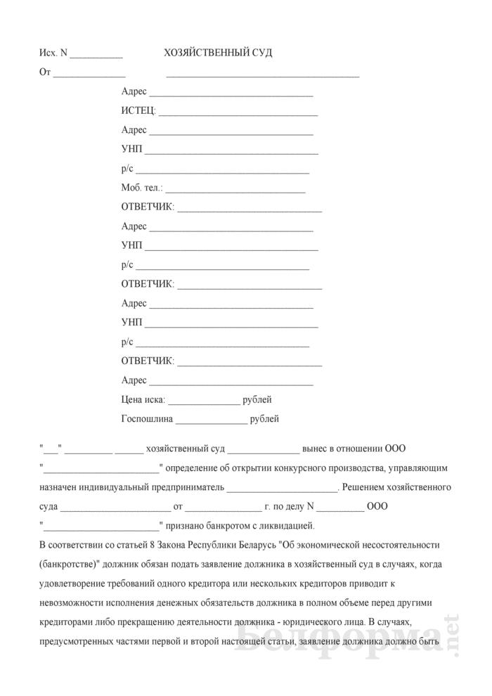 Исковое заявление о привлечении к субсидиарной ответственности участников и директора коммерческой организации. Страница 1