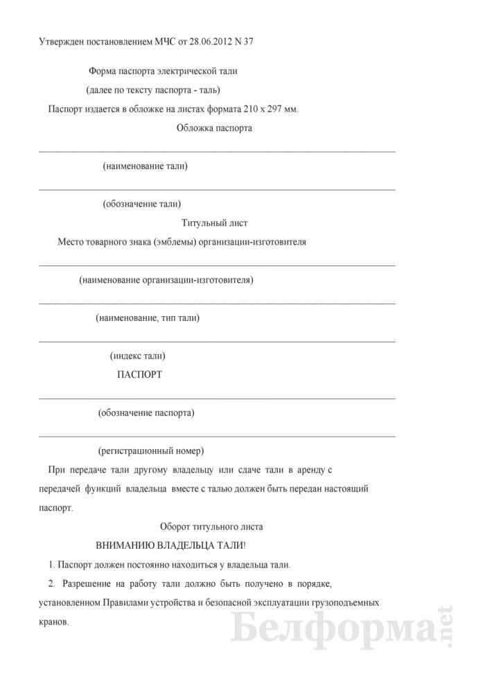 Форма паспорта электрической тали. Страница 1