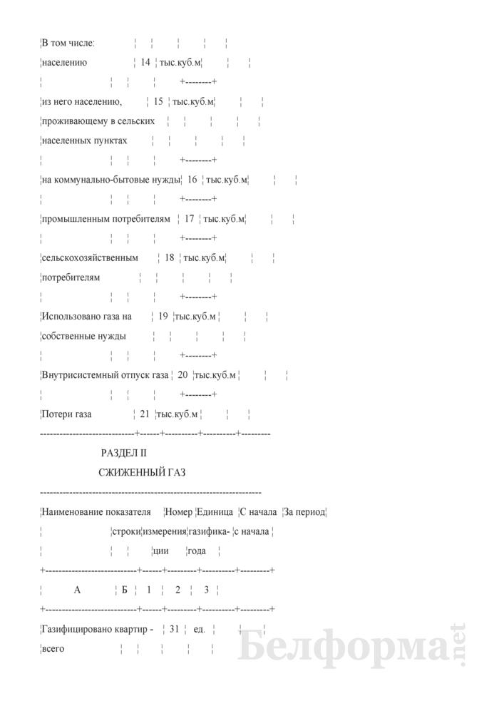 Отчет об использовании газа. Форма 2-газ. Страница 4