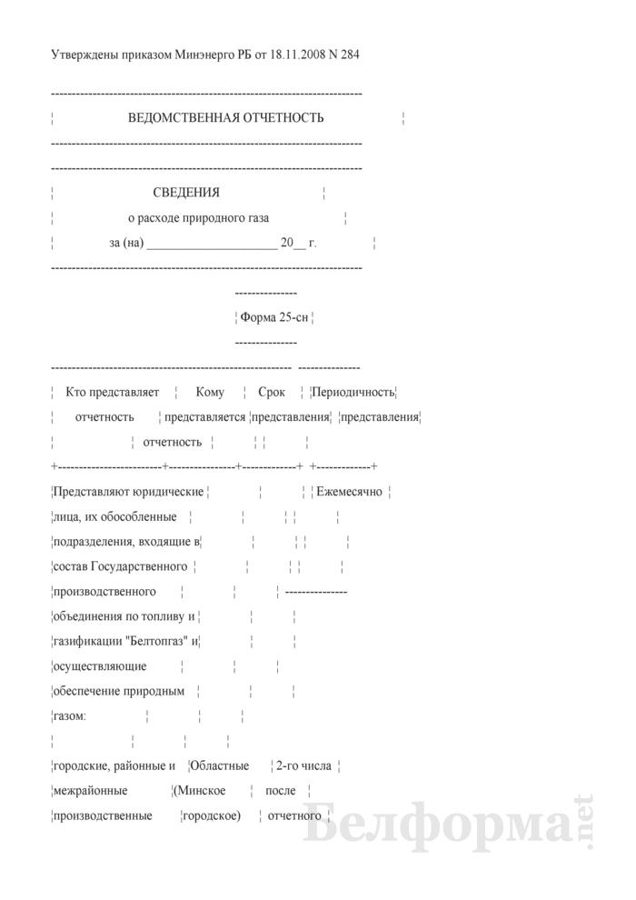 Сведения о расходе природного газа. Форма № 25-сн (ежемесячная). Страница 1