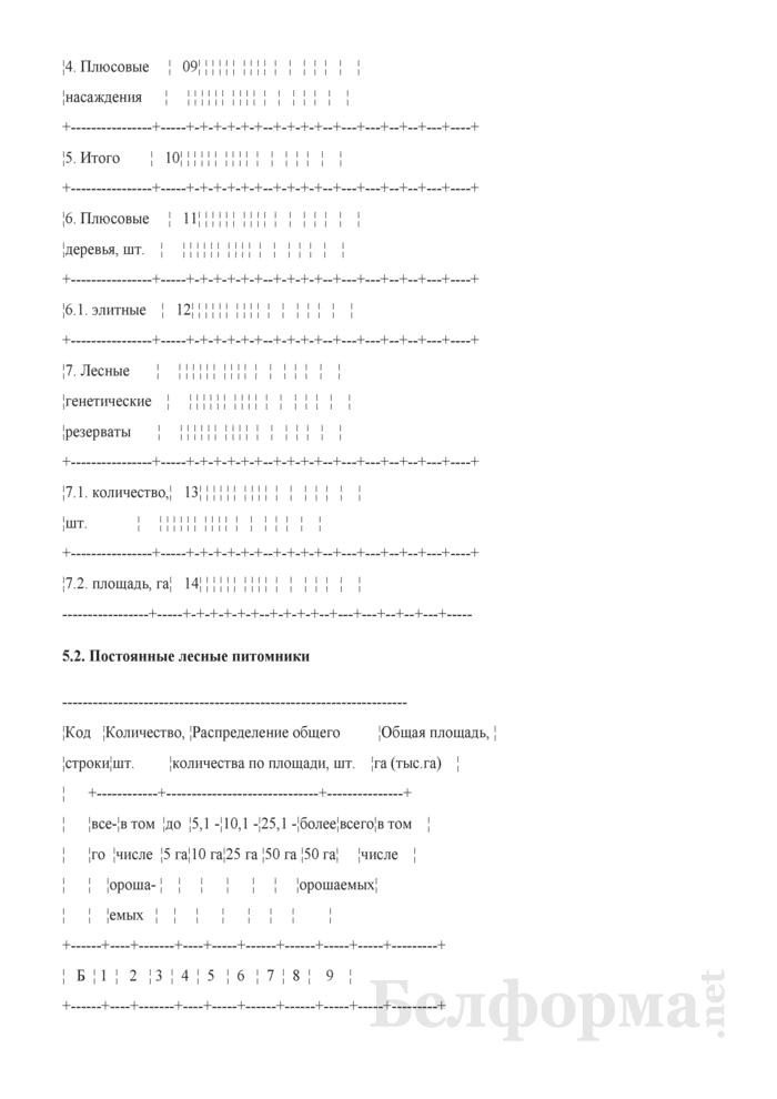Общие сведения о лесном фонде (Форма 3). Страница 13