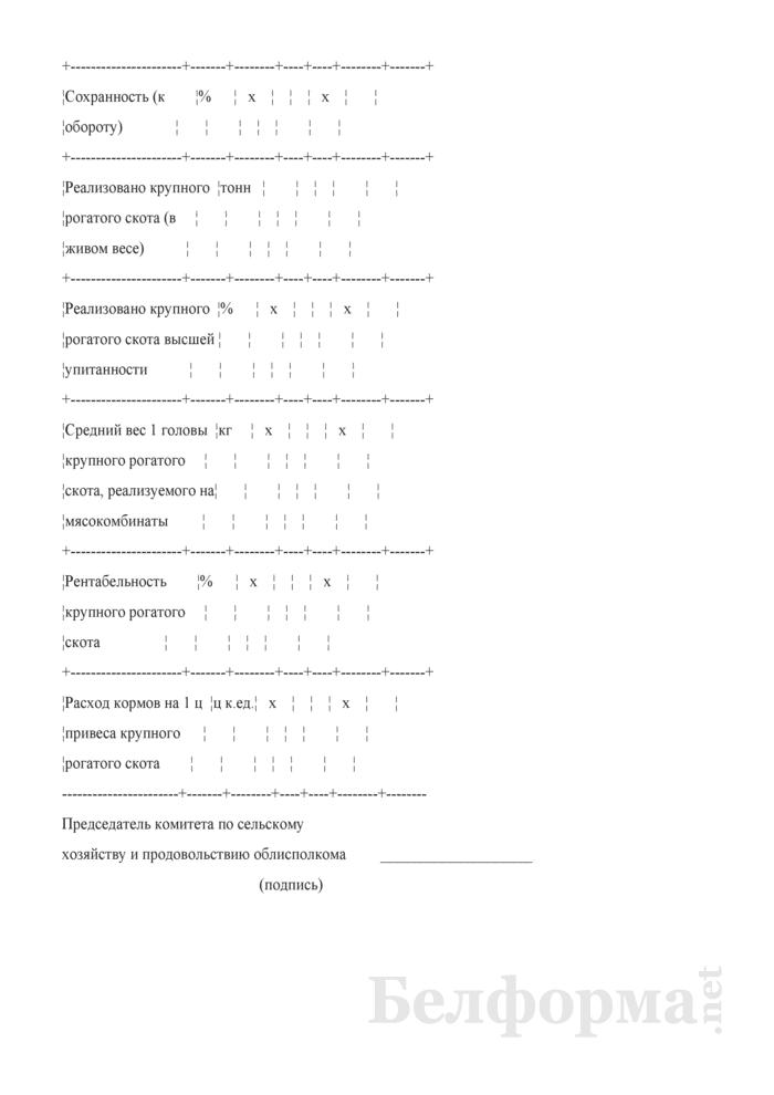 Справка на кандидата в победители республиканского соревнования в животноводстве в 2008 году среди сельскохозяйственных организаций, имеющих животноводческие комплексы по производству говядины. Страница 2