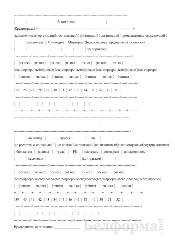 Сведения о наличии дебиторской и кредиторской задолженности (Форма 1-дк (ежемесячно)). Страница 3