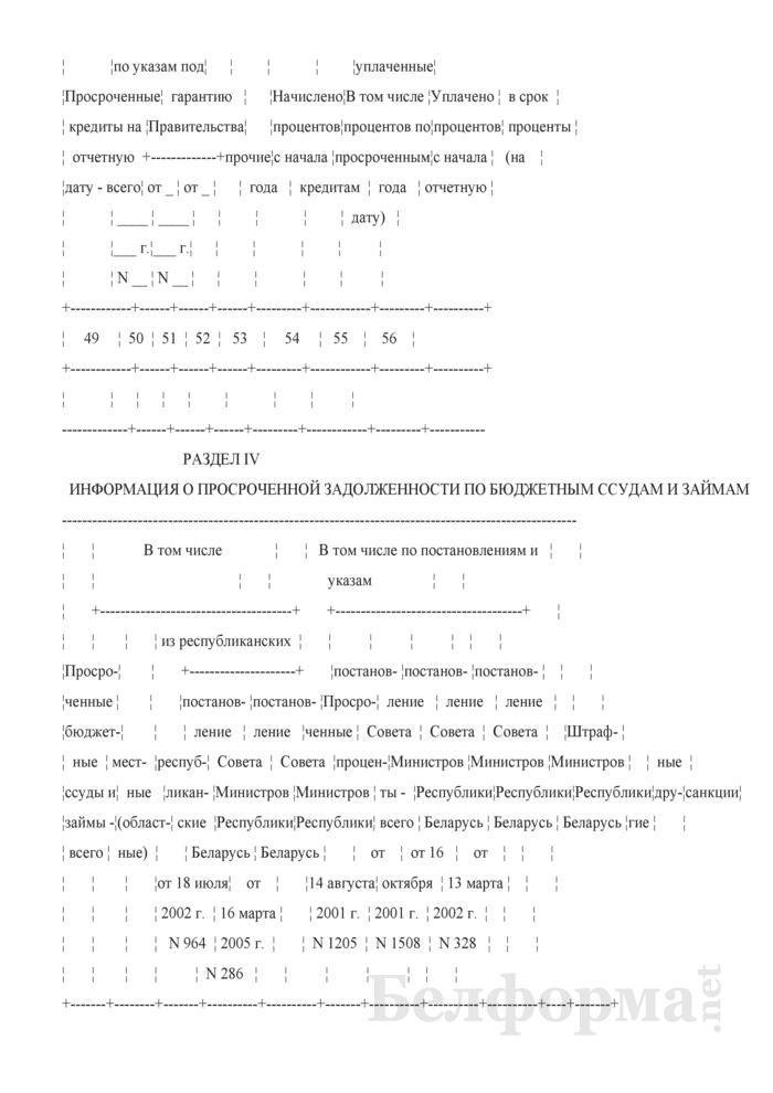 Сведения о получении и погашении заемных средств (Форма 1-ФО (месячная)). Страница 7