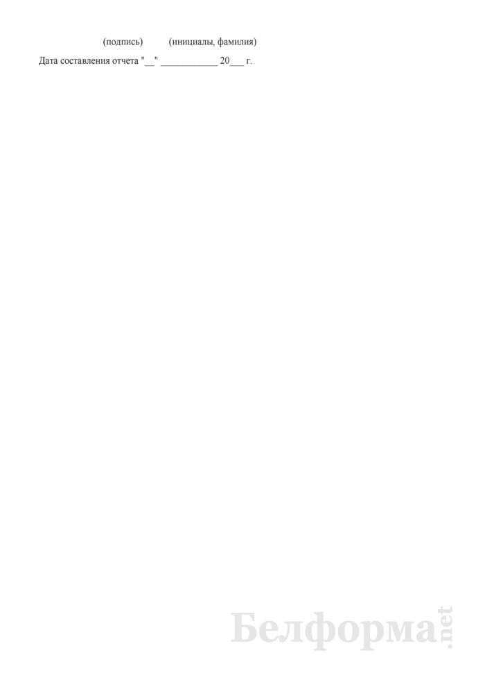 Формуляр-образец ведомственной отчетности (утвержденный Минтрансом). Страница 2